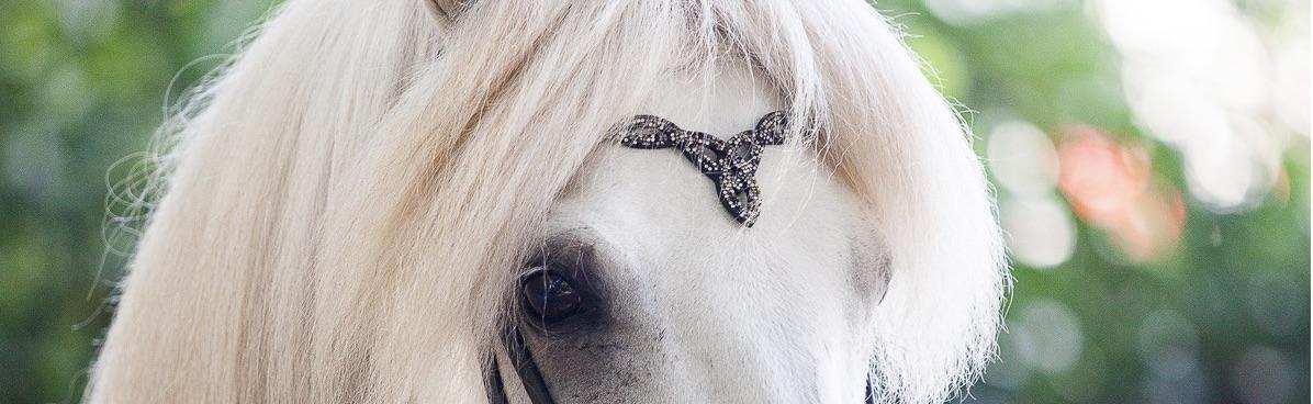 hest_er_best