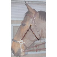 Dyon Hackamore Sidestykker English Collection