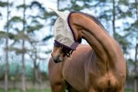 Amigo finmasket fluemaske - flere farger