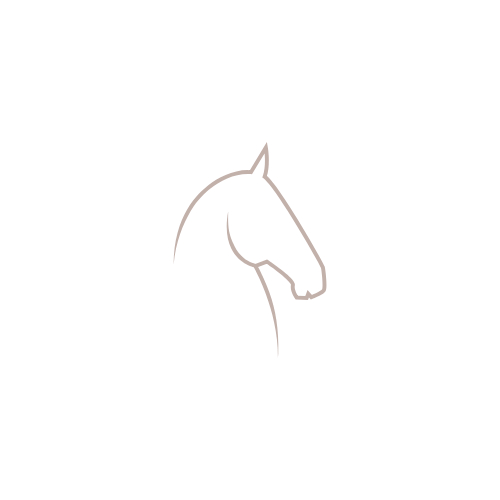 Kentucky Nylon Plaited Hundehalsbånd - Navy